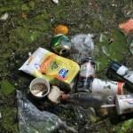 Zaterdag 29 maart 2014: Schoonmaakactie natuur Avelingen
